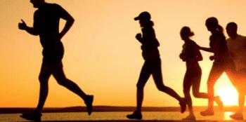 ejercicio físico principal